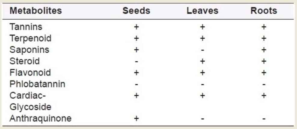 Phytochemical analysis of Dill seeds, leaves and roots